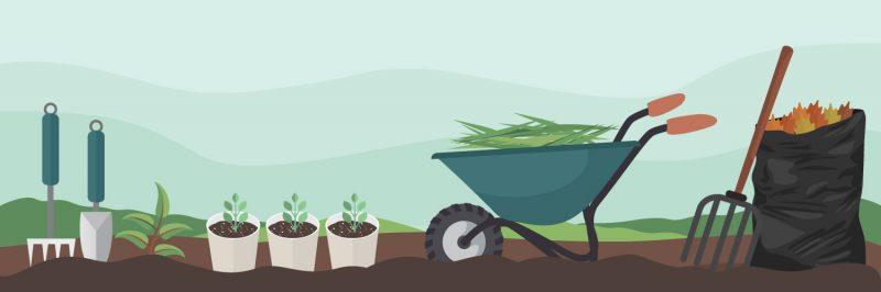woningontruiming en tuin Zwaanshoek